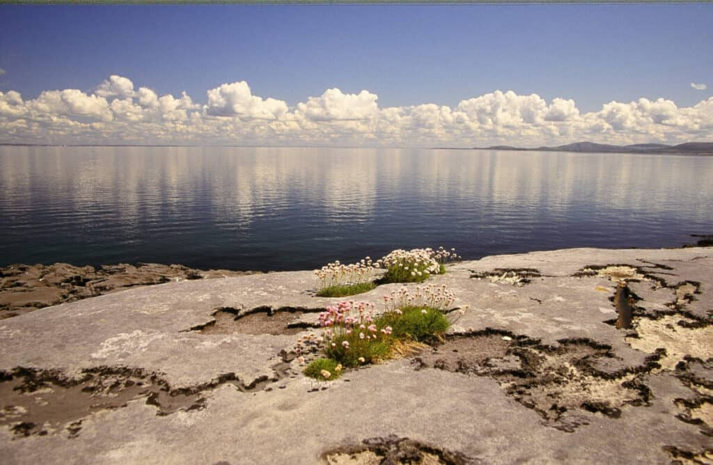 A Lake in the The Burren Ireland
